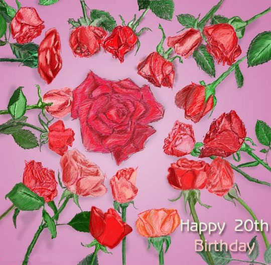 20th Birthday Roses Drawing