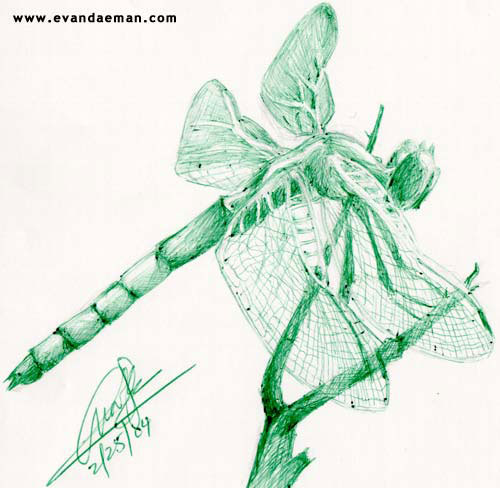 Dragon Fly in Green Ink