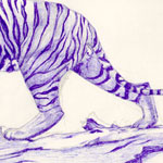 Drawing of Sumatran Tiger done in Blue Ink by Evan Islam