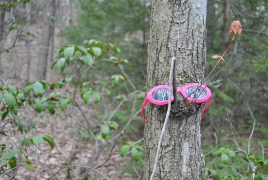 Pink Sunglass at Southford Falls